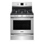 FrigidairePROFESSIONALFrigidaire Self Clean Convection Gas Range