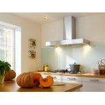 MieleMiele 48&quot Wall Mount Vent Hood