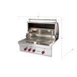 WolfWolf 36&quot Built-in Gas Grill