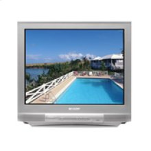 standard definition flat screen television