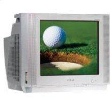"""20"""" DynaFlat™ TV with DVD Component Input"""