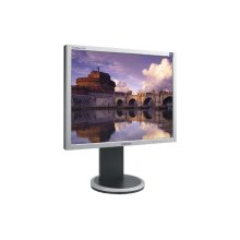 "Syncmaster™ 204B-Silver 20.1"" Analog/Digital Monitor"