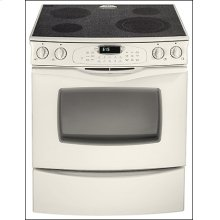 Slide-In Electric Convection Range
