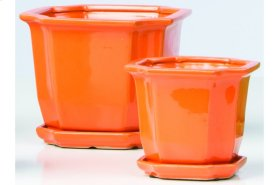 Orange Sucre Petits Pots with Attached Saucer - Set of 2