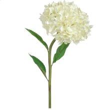 Hydrangea leaves cream