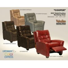 Multi-Position Reclining Chair