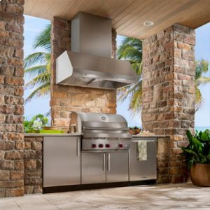 "48"" SS Pro-Style Range Hood with Extra Large Capture Designed for Outdoor Cooking in Covered Lanais"