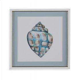 Aquarelle Shells V