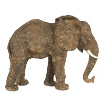 Tai Elephant Accent,Walking
