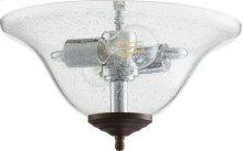 CLR/SEED LED BOWL - TS/OB