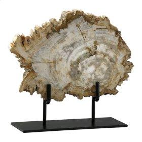 Md Petrified Wood On Stnd