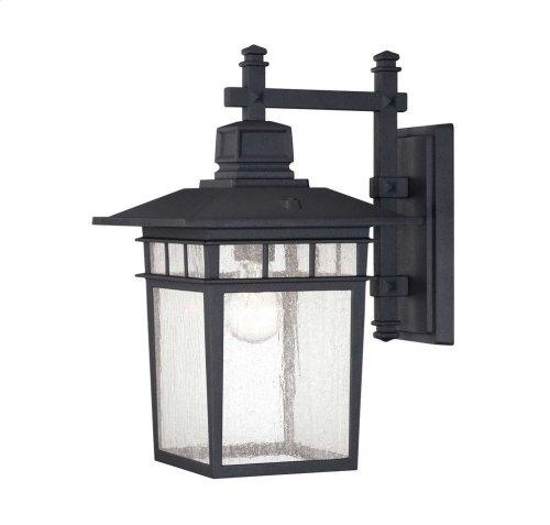 """Linden 9"""" Wall Lantern"""