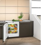 """24"""" Under-worktop, full-space BioFresh refrigerator for integrated use Product Image"""