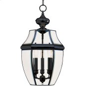 South Park 3-Light Outdoor Hanging Lantern