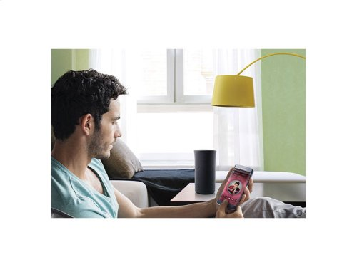 Radiant360 R1 Wi-Fi/Bluetooth Speaker