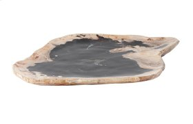 Petrified Wood Plate Assorted Color and Shape, SM