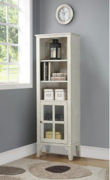 Bookcase W/door