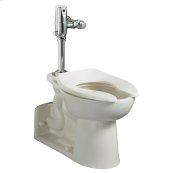 Priolo 1.1-1.6 gpf ADA EverClean Universal Flushometer Toilet - White