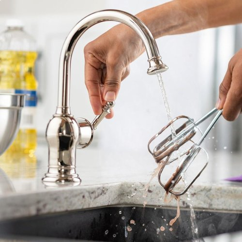 Iris Instant Hot Water Dispenser Faucet (F-H2300-Chrome)