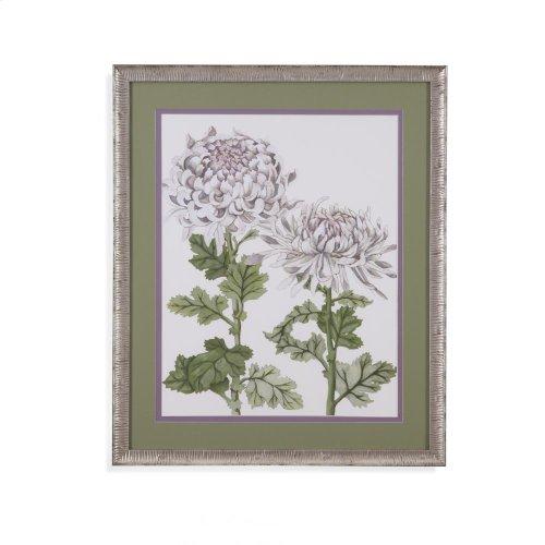 Early Spring Crysanthemums II