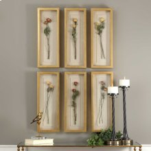 Rosalie Shadow Boxes, S/6
