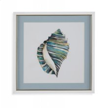 Aquarelle Shells I