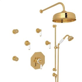English Gold Perrin & Rowe Edwardian Thermostatic Shower Package with Metal Lever