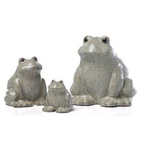 Large Calm Frog (Min 4 pcs)