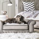 Carey Pet Sofa Product Image