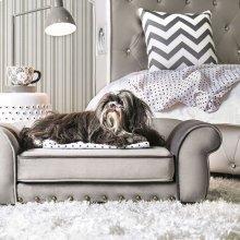 Carey Pet Sofa