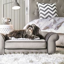 Carey Pet Sofa