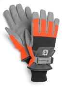 Functional Winter Gloves Product Image