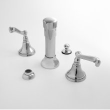 Bidet Set with Charlotte Handle