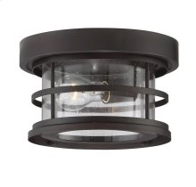"Barrett 10"" Outdoor Ceiling Light"
