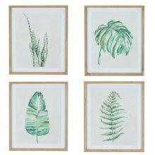 Leaf Prints - Set Of Four