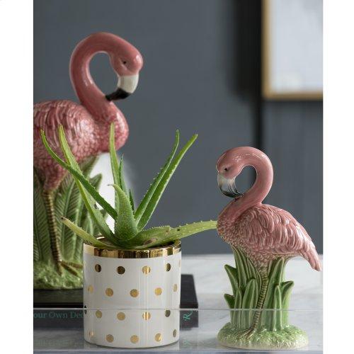 Flamingo Accent
