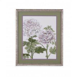 Early Spring Crysanthemums III