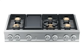 """Modernist 48"""" Rangetop, Silver Stainless Steel, Natural Gas"""