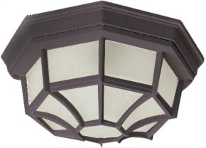 Crown Hill 2-Light Outdoor Ceiling Mount