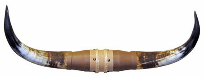 Horns 2-3 Ft
