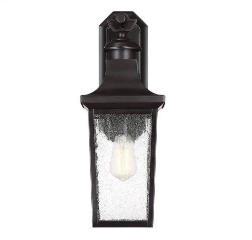 """Randolph 1 Light 20"""" Exterior Lantern"""
