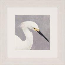 Seabirds Thoughts II