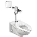 "American StandardPolished Chrome Selectronic Exposed Multi-AC Toilet Flushometer for 1-1/2"" Top Spud Bowls"
