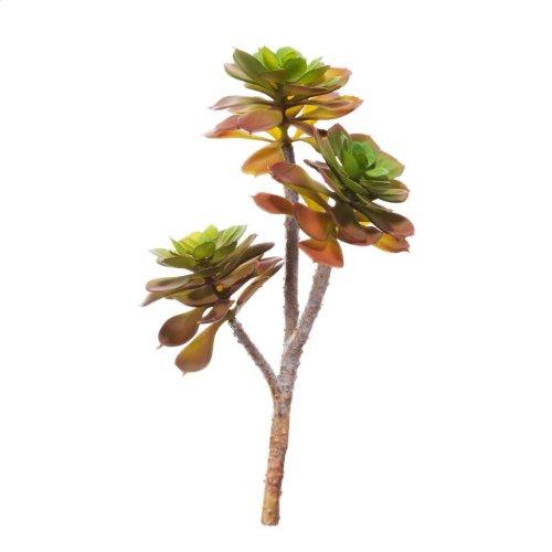 ElGreko Succulent 3Stem
