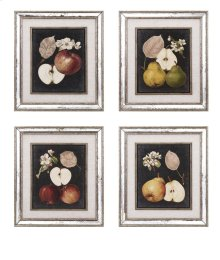 Camilla Fruit Wall Decor - Ast 4