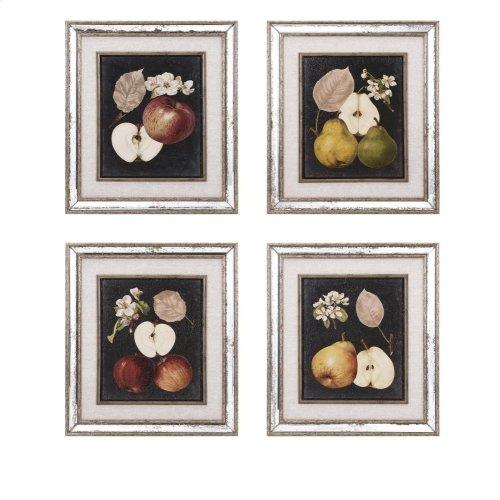 Camilla Fruit Wall Decor - Ast 4