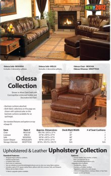Odessa Collection