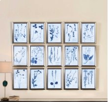 Dried Flowers Framed Prints, S/15