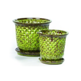 Fossette Petits Pots w/attached saucer, Green - 4 sets of 2 (Min Qty 4)