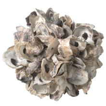 Large Oyster Shell Decorative Sphere.
